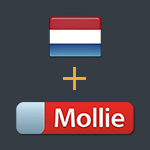 Dutch language and mollie gateway preview